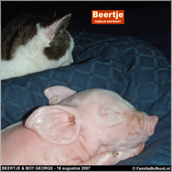 BEERTJE & BOY GEORGE - 16 augustus 2007