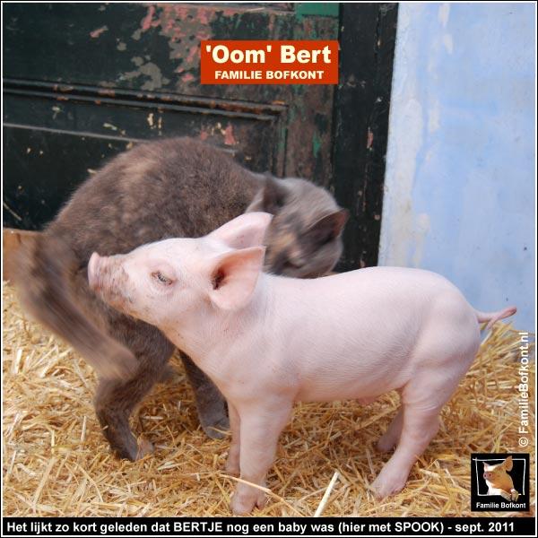 Het lijkt gisteren dat BERTJE nog een baby was (hier met SPOOK) - september 2011